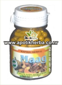 kapsul herbal maag